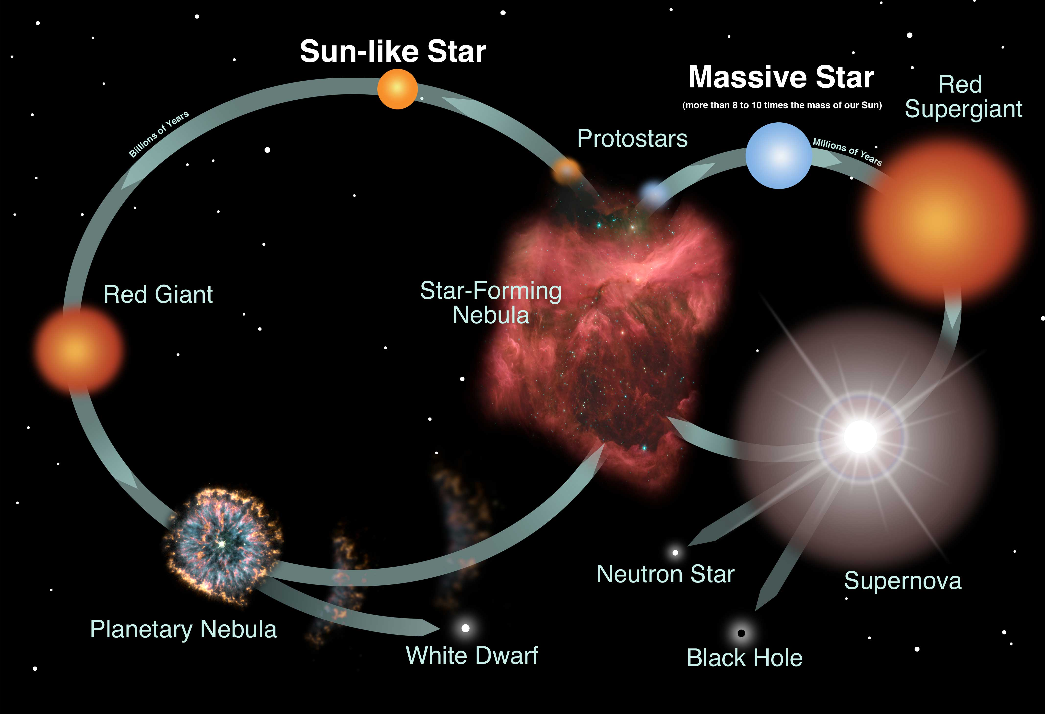 Star Lifecycle infographic